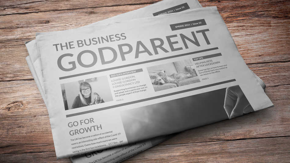 Find out more about the Business Godparent by downloading our PDF!